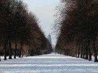 Allee mit Rathausturm Im Hintergrund. Großer Garten in Dresden im Winter