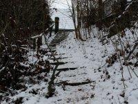 Dresdner Heide rund ums Fischhaus Januar 2013