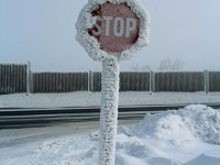 Stopschild am Grenzübergang Zinnwald