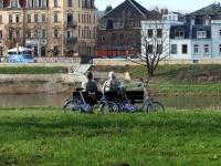 ENDLICH Frühling nach dem langen Winter, Elbwiese Dresden Ostragehege im April 2013