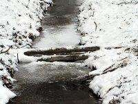 zugefrorener Bach im Wilgehege Moritzburg im Januar 2013