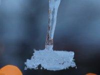 Eiszapfen mit einer Breite von ca. 5mm